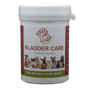 bladder care